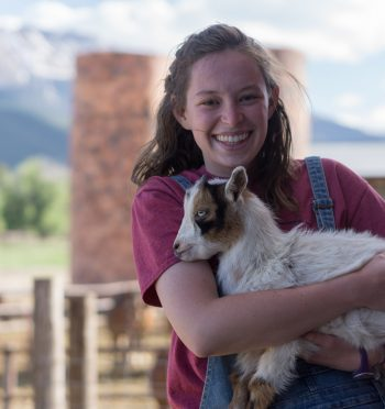 Read A Student Perspective on Recruiting Future Food Animal Veterinarians