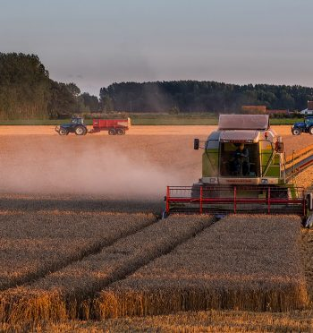 Read Opinion: Sustainable Agriculture in the U.S. vs. the EU